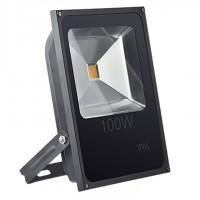 Прожектор SLFL LED 100W 4200K
